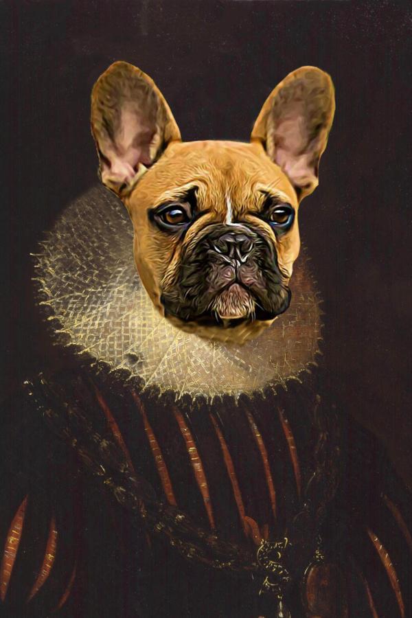 Classic pet portrait