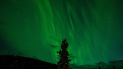 northern-lights-1149130