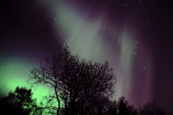 northern-lights-1303653