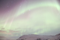 the-northern-lights-703672