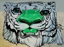 graffiti-1385487